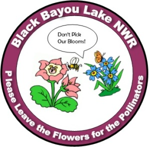 Black Bayou Protect Pollinators Button