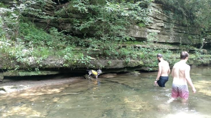 Creek Buffalo River Arkansas