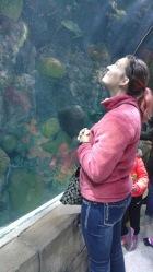 NOLA Aquarium Morinventures