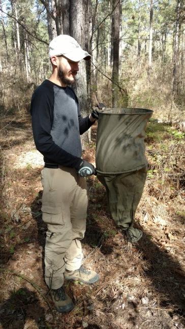 Leaf Litter Samples Entomology Morinventures